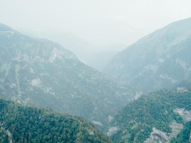 Горы природа свежий воздух пар туман деревья красивый пейзаж.