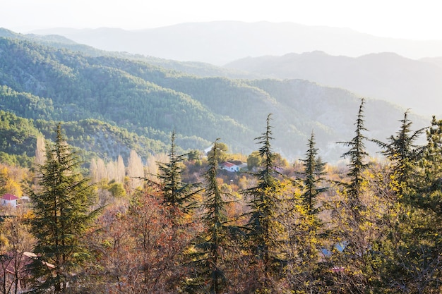 霧のかかった朝のキプロスの山のシルエット