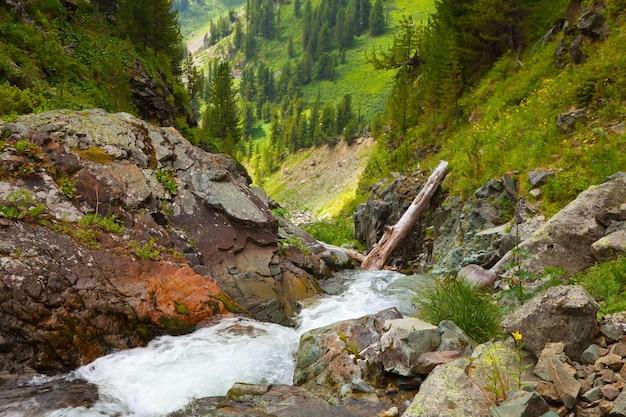 Mountains stream