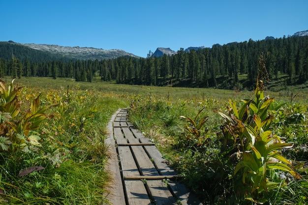 山の夏の風景。旅行のコンセプト。岩と湖の景色。