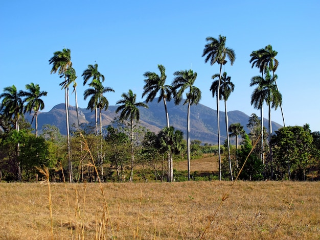 Mountains and valleys in trinidad, cuba
