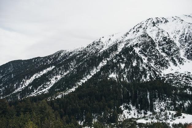 Горы зимний пейзаж, камень и деревья