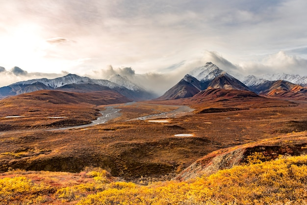Mountains with snow top landscape at denali national park, alaska