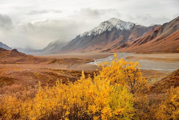 Mountains with snow top landscape at denali national park, alaska