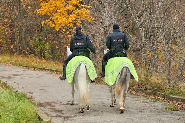 Mounted police in autumn city park, back view.