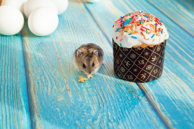 The mouse eats an easter cake on a turquoise wooden table. a traditional treat for the holiday