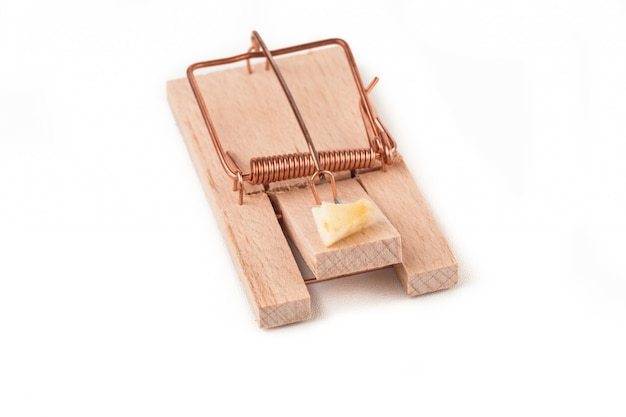 Mousetrap with cheese on it