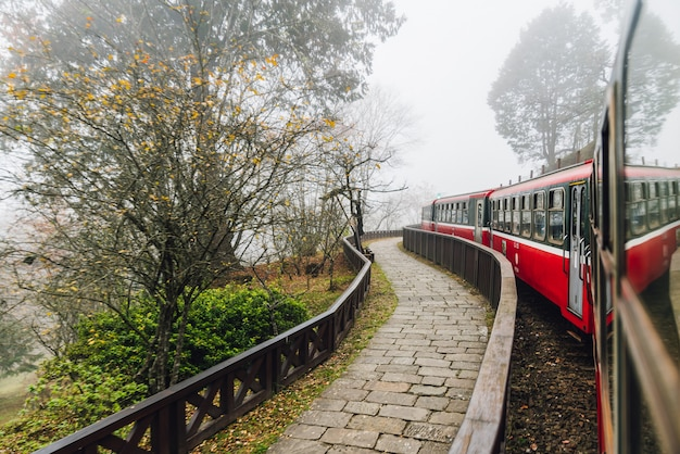 Moving red trains in alishan forest railway stop with motion blur trees outside in alishan, taiwan.