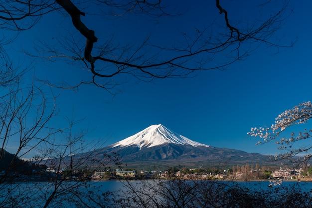 山河口湖富士吉田での富士。