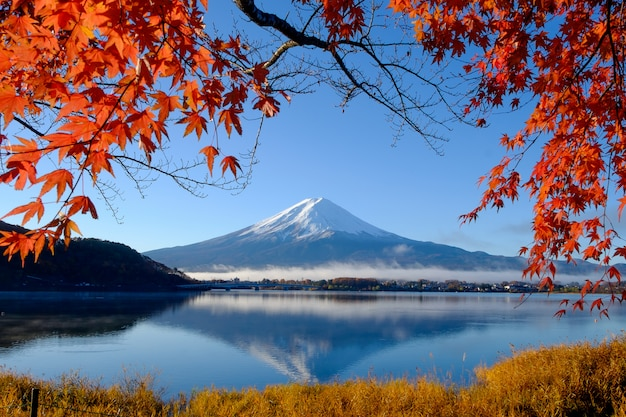 Mt.fuji and autumn foliage at lake kawaguchi