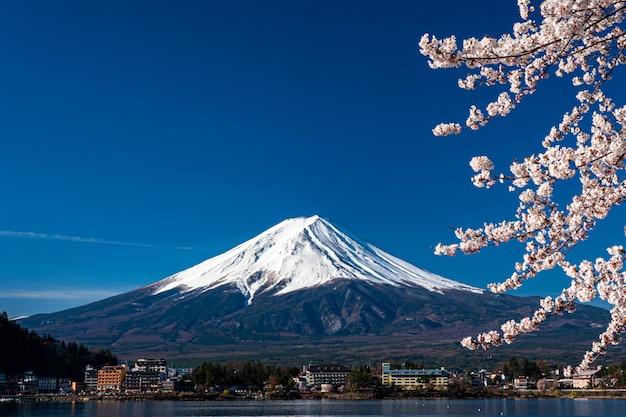 Mt. fuji in the spring time with cherry blossoms at kawaguchiko fujiyoshida, japan.