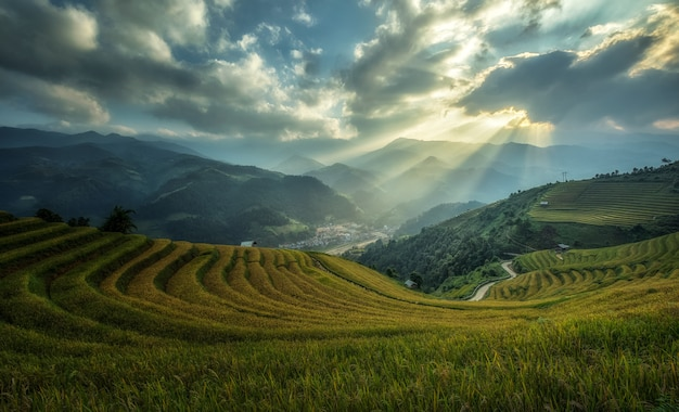 Рисовые поля на террасе mu cang chai, yenbai, вьетнам.