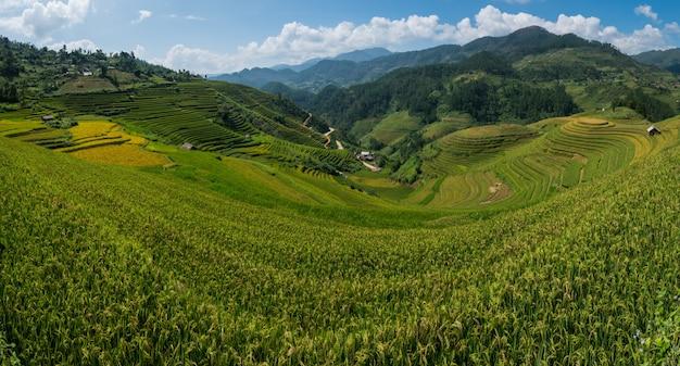 Mu cang chai、ベトナムの棚田