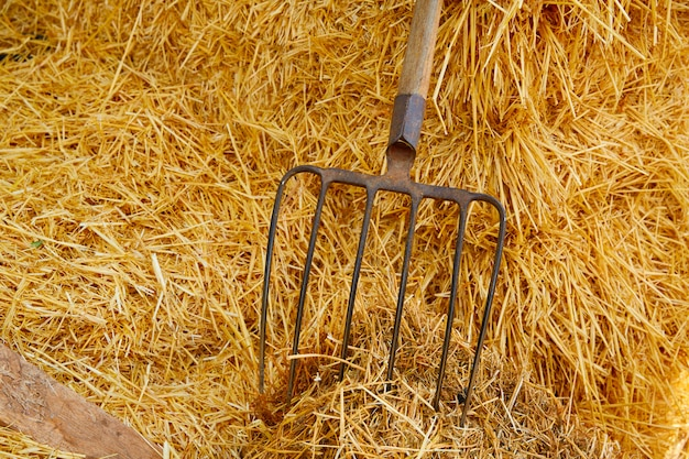 Muck fork stable tool on straw bale