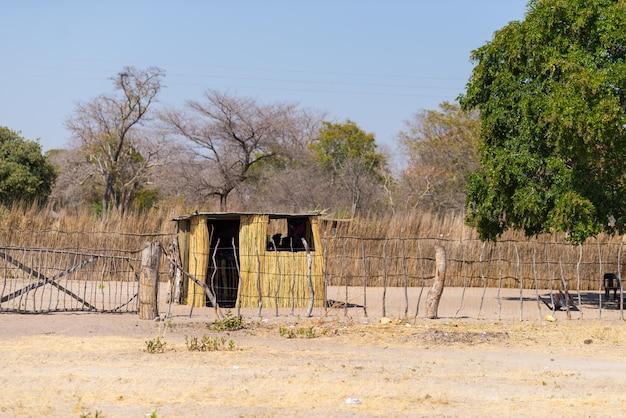 진흙 짚과 부시에 초가 지붕 나무 오두막. 아프리카 나미비아에서 가장 인구가 많은 지역 인 시골 카프리 비 지구에있는 마을.