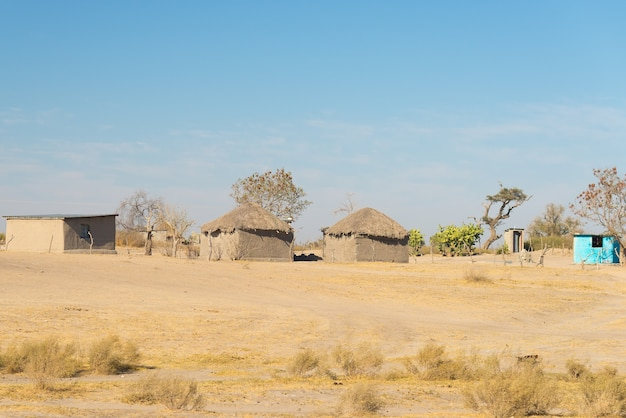 Mud straw and wooden hut with thatched roof in the bush. namibia, africa.