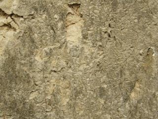 Muddy wall texture  textured
