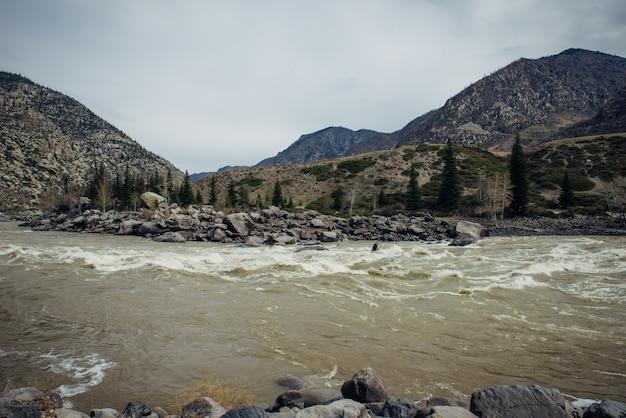 山と灰色の空を背景に乱流の川の泥水。早春、融解水、緑なし。野生の捨てられた岩の多い海岸。
