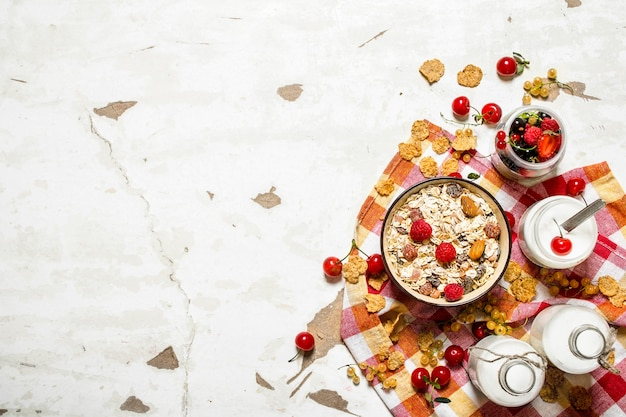 Muesli with forest wild berries on rustic background