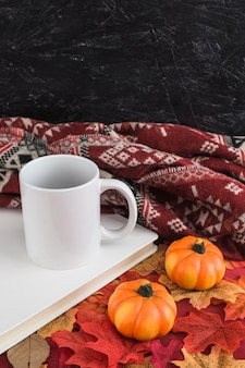 Mug and book near pumpkins and blanket on leaves