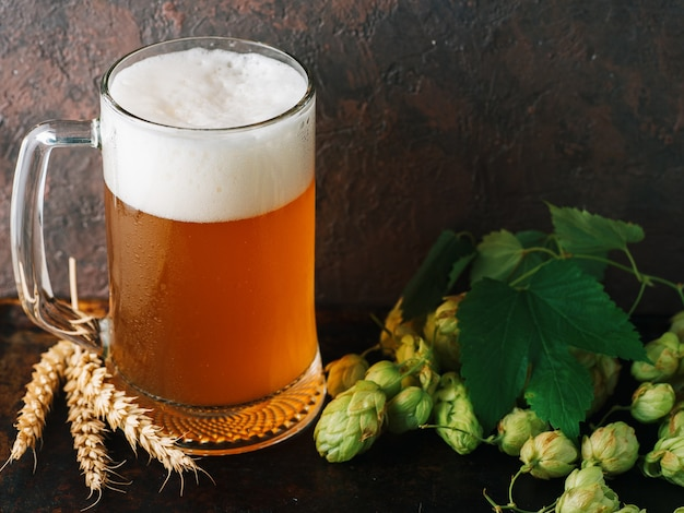 Mug of beer on the table with wheat and green hops