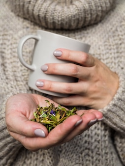 Mug and dry grass chamaenerion in the hands of the woman. woman in sweater sipping tea with herbs. folk medicine