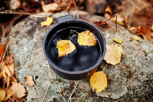 Mug of hot tea autumn in forest in yellow foliage