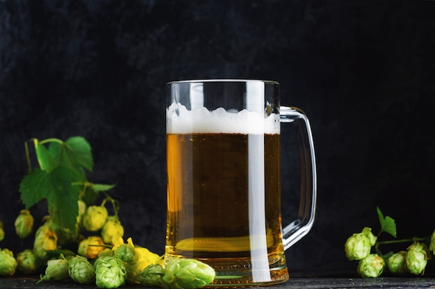 Mug of lager light beer on a dark background with green hops