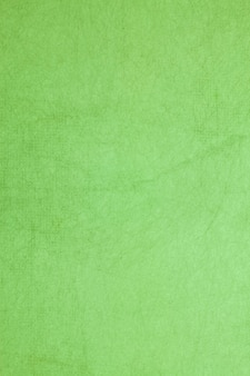 Mulberry paper green color.
