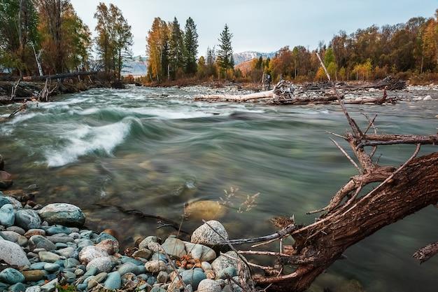 Multa river in mountain altai republic, russia.