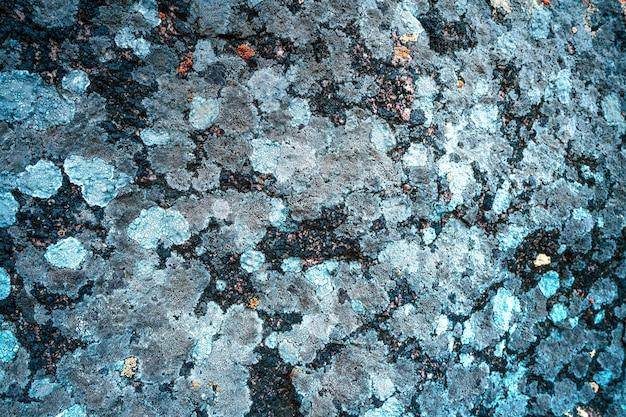 돌에 여러 가지 빛깔의 금형 질감