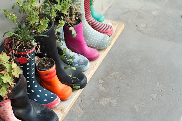 Multi-colored rubber boots as flower pots with different blooming flowers on the veranda