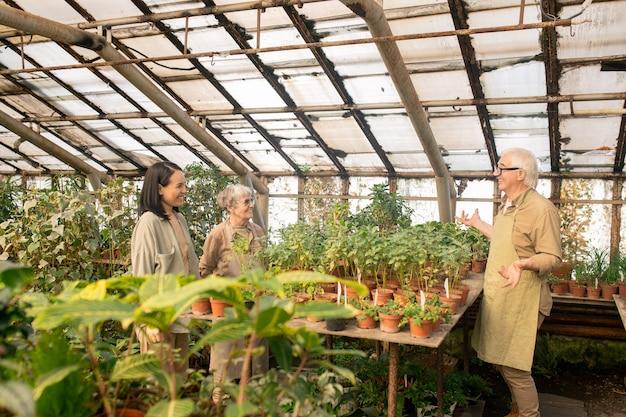 Сотрудники многонационального питомника стоят за столом с горшечными растениями и разговаривают, работая в теплице