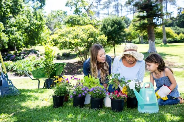 Multi-generation family gardening in the park