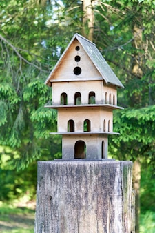 Multi storey bird house on a tree stump in the park, bird feeder