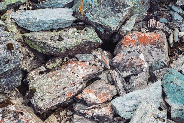 Разноцветные морены со мхами и лишайниками крупным планом