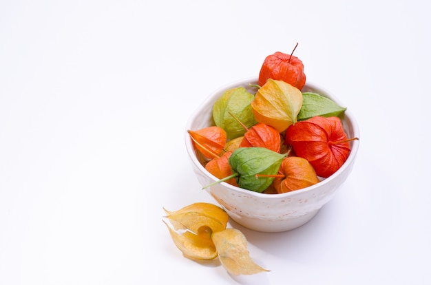 Multicolor physalis flowers in a plate against white background. template with ripe red physalis flowers.