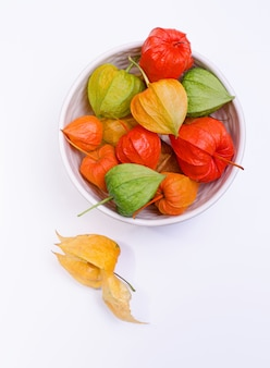 Multicolor physalis flowers in a plate