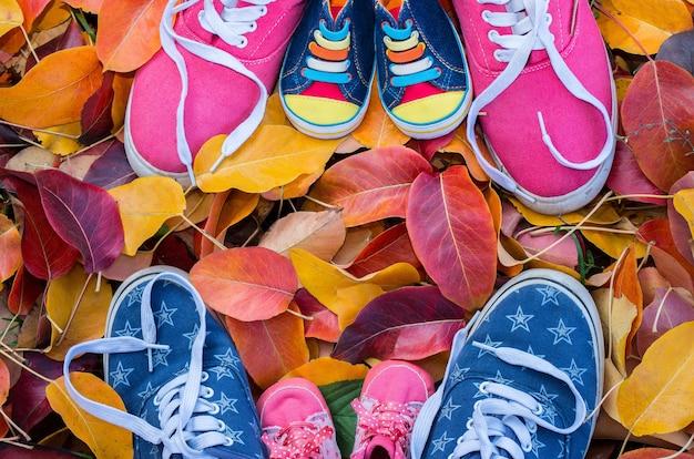 타락한 단풍에 서있는 여러 가지 빛깔의 신발 운동화. 평면도.