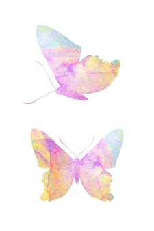 Multicolor watercolor butterfly. tropical insect for design. isolated on white background
