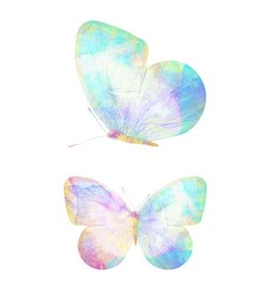 多色の水彩蝶。デザインのための熱帯昆虫。白い背景で隔離