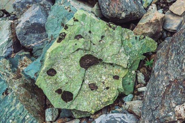 色とりどりのボルダーストリーム。緩い岩がクローズアップ。ランダムに散らばった石の間の植物。