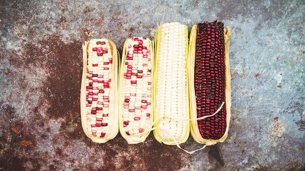 Multicolored corn on cob