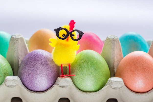 Multicolored easter eggs in a box with cute yellow chick. copy space for your text