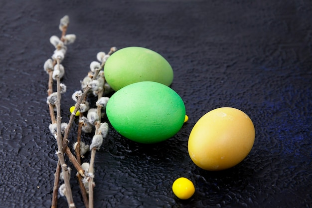 Multicolored easter eggs and pussy willow branches on dark textured background