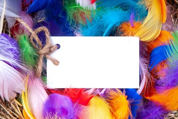 モックアップのノートが付いた色とりどりの羽。コンセプトイースター。