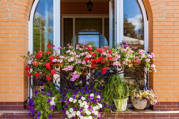 창턱에 있는 창 밖 화분에 있는 여러 가지 빛깔의 꽃