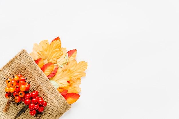 Разноцветные листья в холщовой сумке