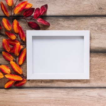 Multicolored leaves with white frame