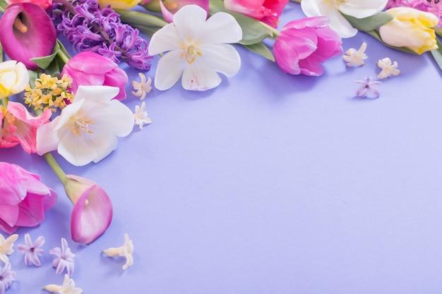 紫色の背景に色とりどりの春の花